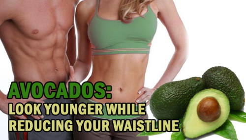Avocados: Look Younger While Reducing Your Waistline