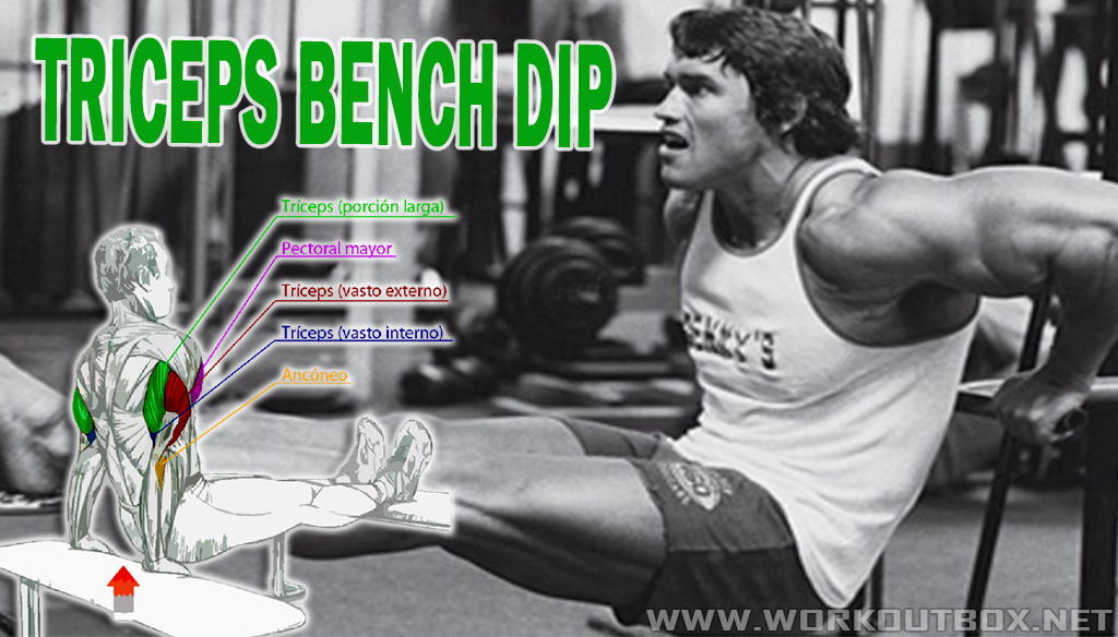 How To Build Big Tricep