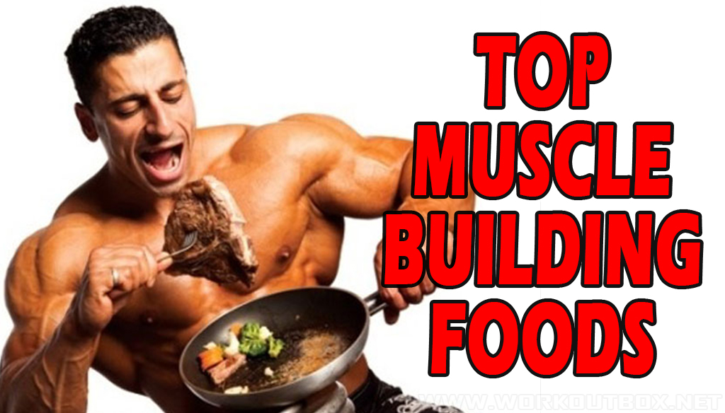 TOP MUSCLE-BUILDING FOODS