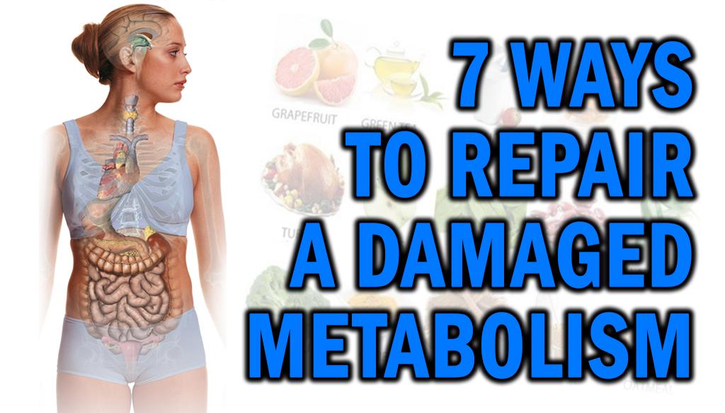 7 Ways To Repair A Damaged Metabolism