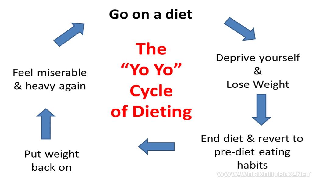 The Yo-Yo Cycle Of Dieting