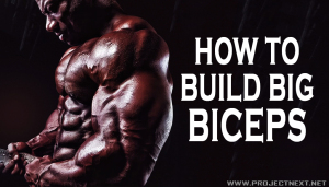 How To Build Big Biceps