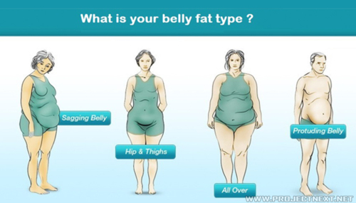 What is your belly fat type?