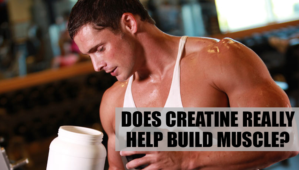 Does Creatine Really Help Build Muscle?