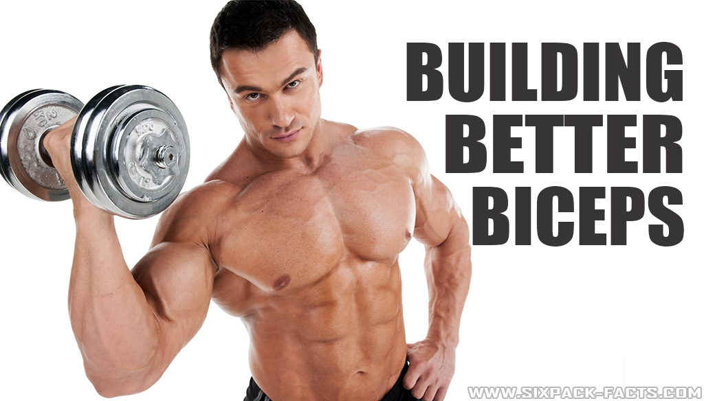 Building Better Biceps