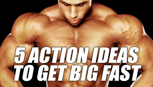 5 Action Ideas To Get Big Fast