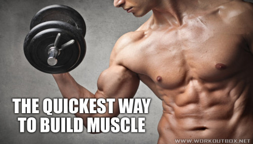 The Quickest Way to Build Muscle