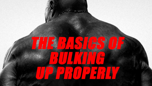 THE BASICS OF BULKING UP PROPERLY