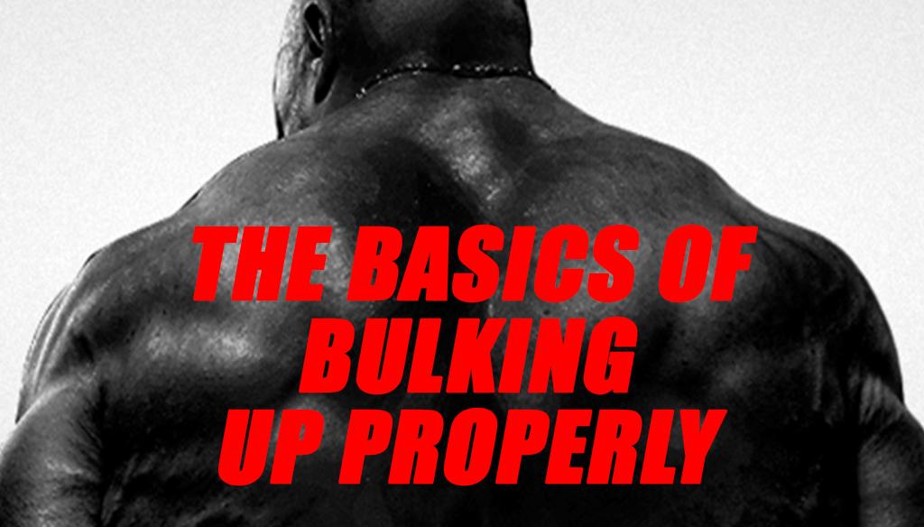THE BASICS OF BULKING UP PROPERLY