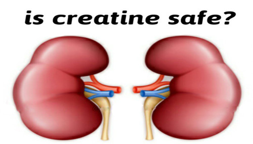 Is Creatine Safe?