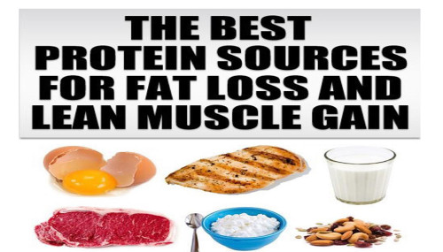 The Best Protein Sources For Fat Loss And Lean Muscle Gain