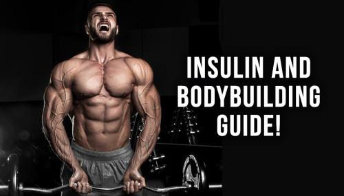 Insulin And Bodybuilding Guide!
