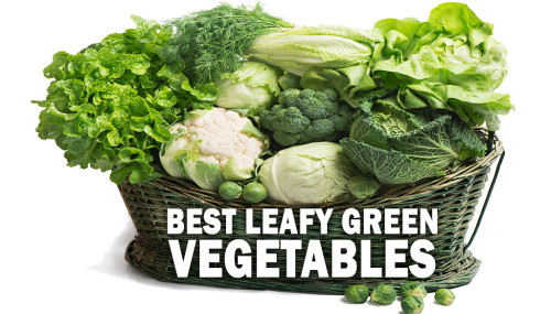 Best Leafy Green Vegetables