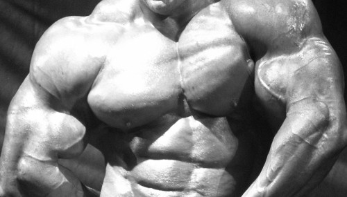 REVEALED: How To Spot A Steroid User