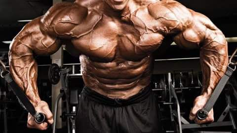 Top 7 Weight Lifting Routines to Build Muscle