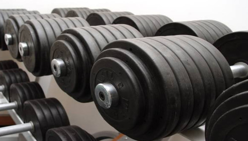 The Best Muscle Building Program