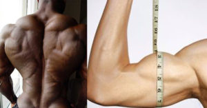 THE CORRELATION TO BIGGER ARMS AND A STRONG BACK