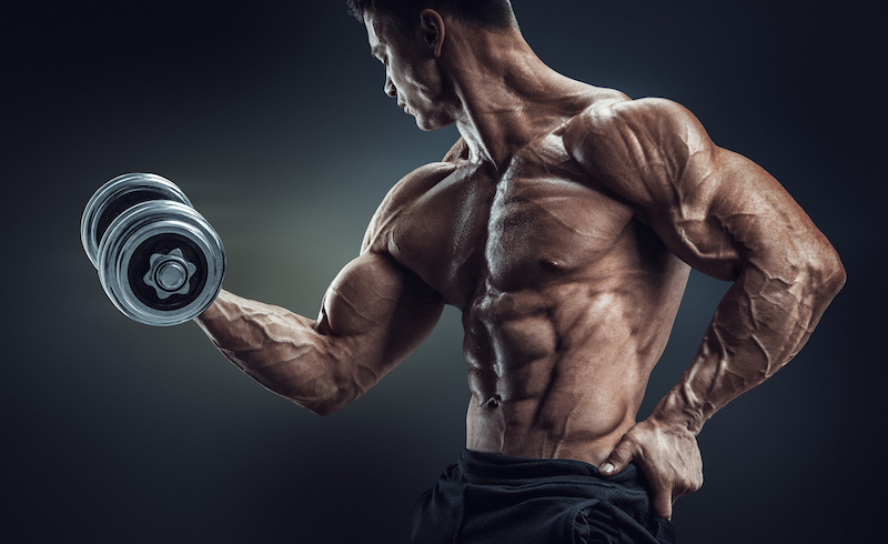 7 Reasons Why You Aren't Shredded