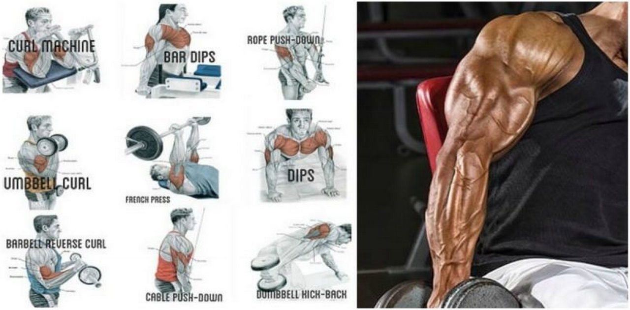 3 Supersets for Bigger & Stronger Arms