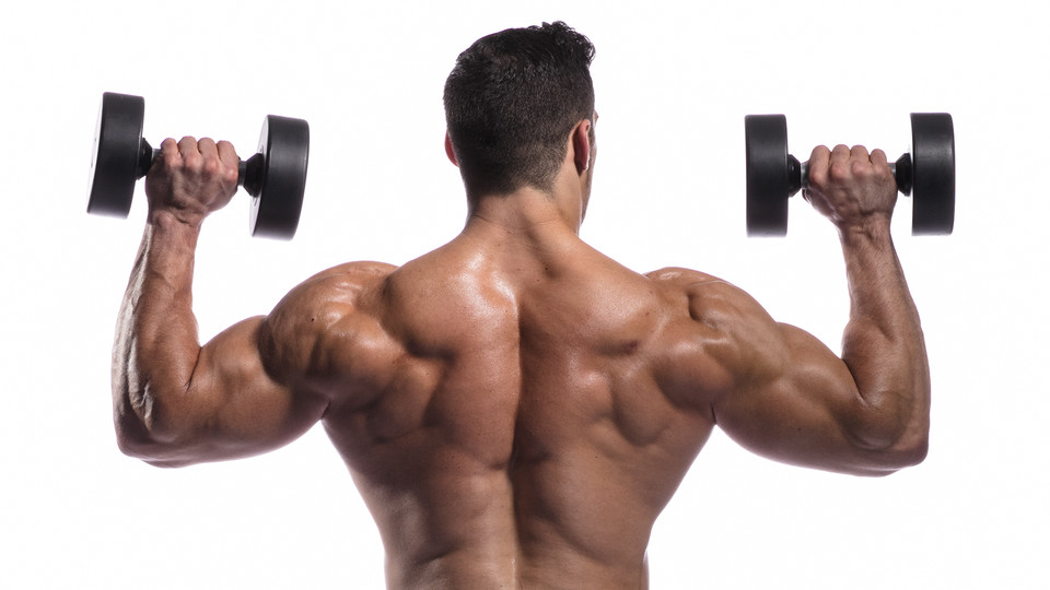 5 Awesome Shoulder Muscle Exercises Project Next