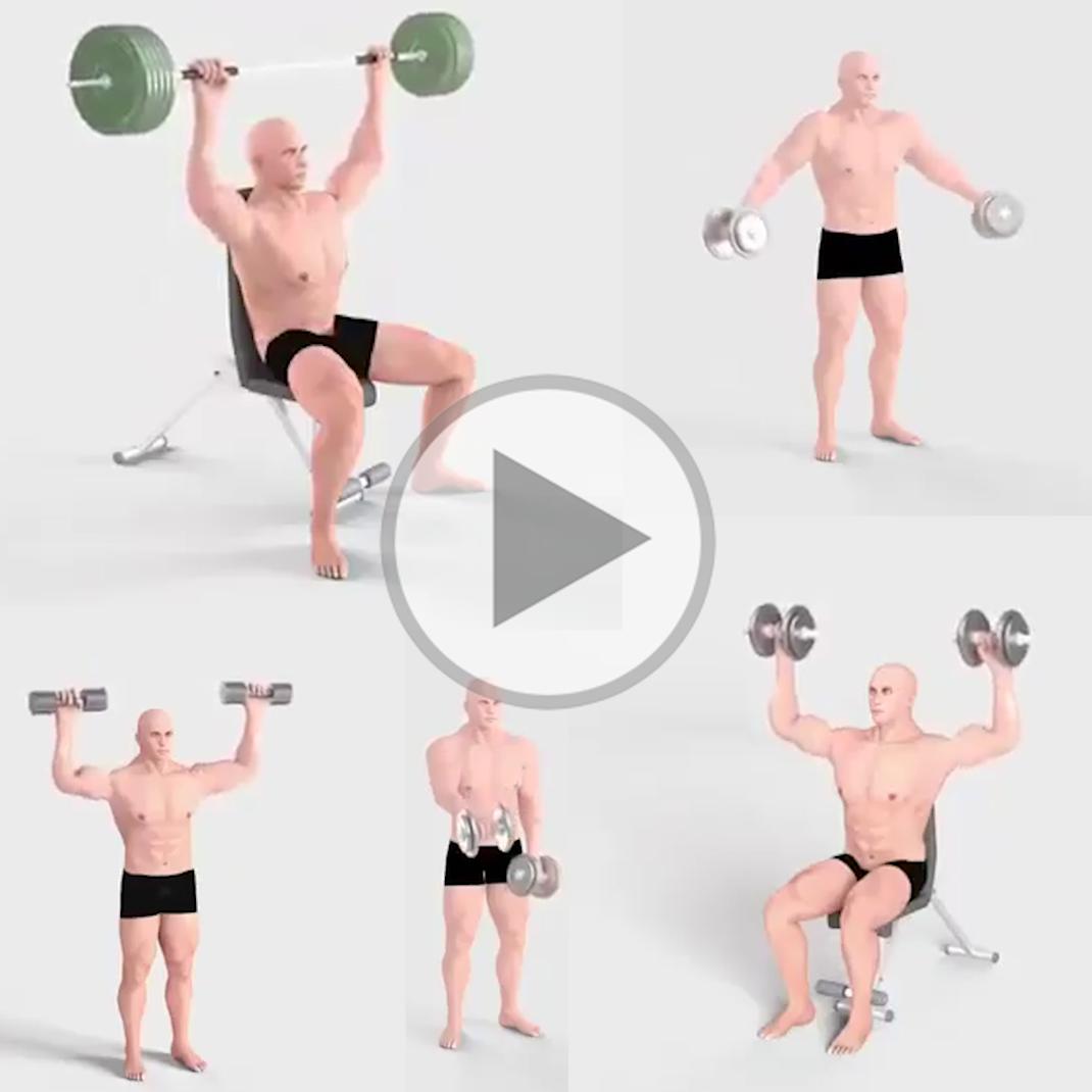 Best Of Shoulder Exercises