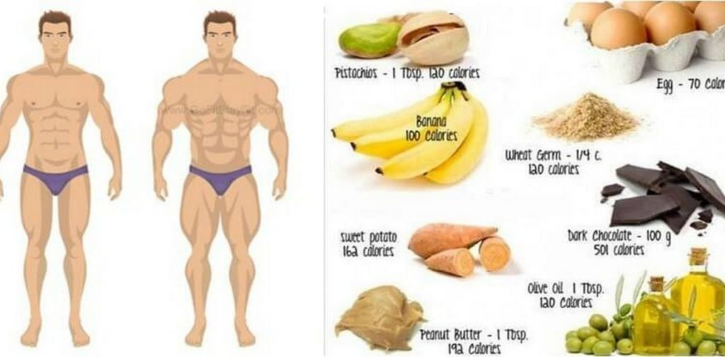Good Things To Eat To Build Muscle