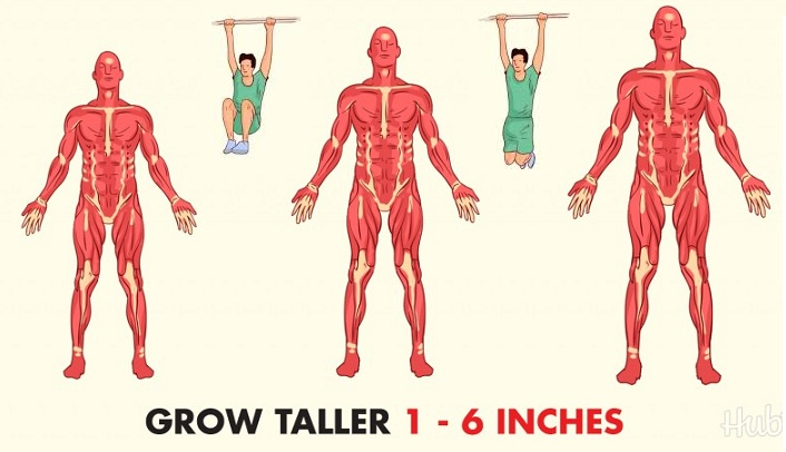 Tips on How to Grow Taller Naturally - Amazing Ways to Increase Your Height Fast