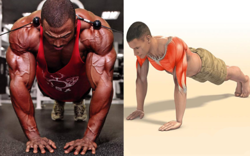 17 Different Push-Up Variations for Total-Body Strength