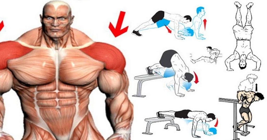 Best Bodyweight Shoulder Exercises You Can Do at Home ...