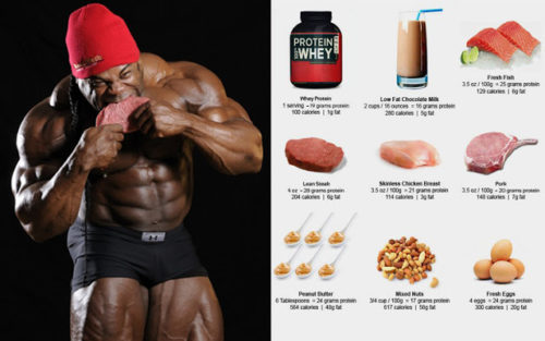 Protein for muscle gain how much