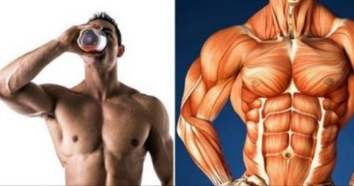 The 4 Best Supplements to Gain Muscle