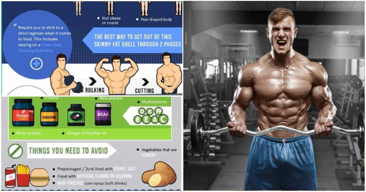 Bodybuilding: Compound Exercises and Nutrition Plan for Men