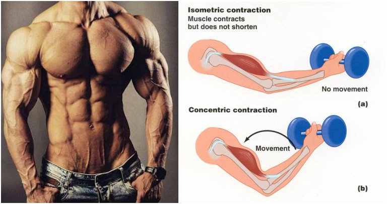 Isometric Contraction Training Method
