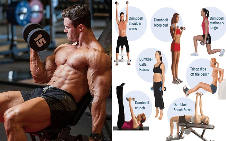 5 Benefits of Dumbbell Training