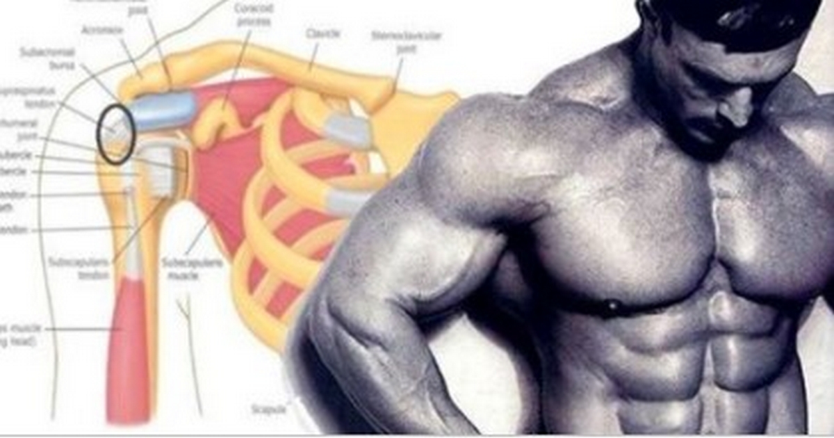 Best 3 Exercises You Need To Do To Develop Monstrous Delts