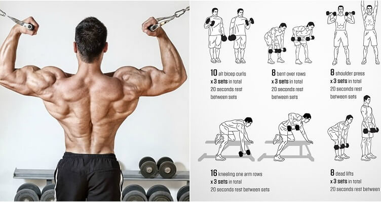Back And Biceps: The Best Workout Combination